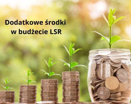 Dodatkowe środki w budżecie LSR