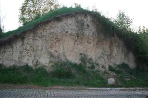 2016.05.15 - Grodzisko wczesnośredniowieczne Sutiejsk